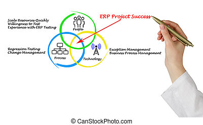 ERP Project Success