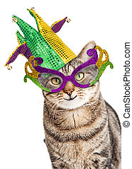 Funny Mardi Gras Cat - Funny photo of a happy cat wearing...