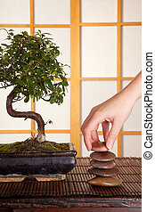 Zen stones and bonsai - Hand stacking zen stones in a...