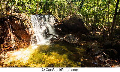 Moving Away from Small Waterfall Falling into Pond in Forest