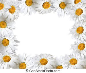 Floral frame with place for your text