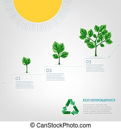 Infographics Bio Tree
