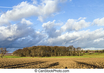 rural landscape with plowed fields and blue sky - panorama...