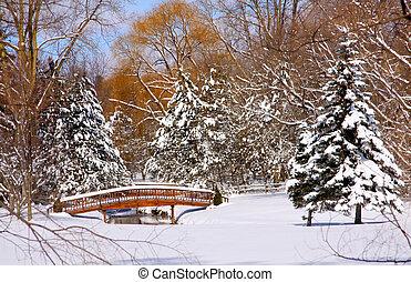 panorâmico, Inverno, paisagem
