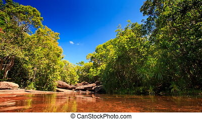 Transparent Pond above Brown Stony Bottom in Tropical Forest...