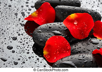 Stones with rose petals and drops of water on black...