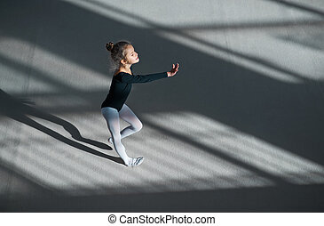 girl dancing in hall rhythmic gymnastics - girl dancing in...