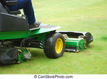 Man cutting grass using motorised grass cutter