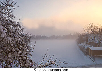 Foggy winter morning with snowfield and branches with snow -...