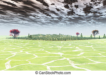 Distant Paradise - Trees and forested area await in the...