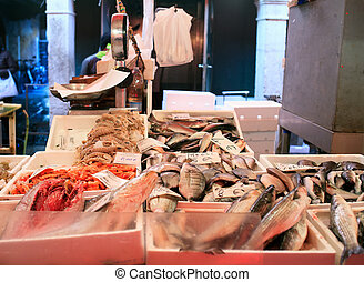 Fish market - View of fish market in Chioggia, Italy