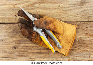 Glove and secateurs - Old gardening glove with a pair of...