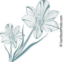 Lily Flower Over White - One colored Abstract Vintage Lily...