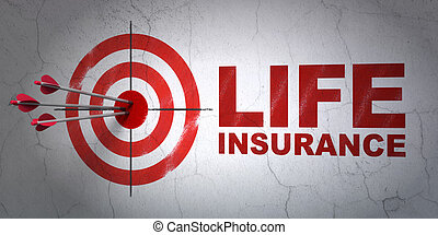 Insurance concept: target and Life Insurance on wall...