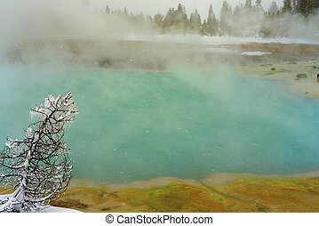 Winter Snowing Geothermal Pool Yellowstone - Geothermal pool...