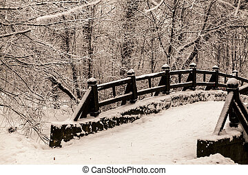 Beautiful old stone bridge of winter forest in the snow at...