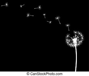 silhouette with flying dandelion buds