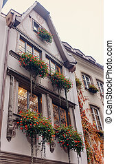 Beds of red flowers on a facade of the building of a window