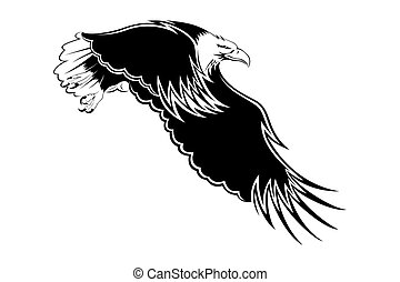 An eagle with wings open