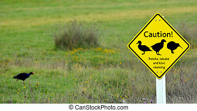 Road sign in Tawharanui Open Sanctuary New Zealand -...
