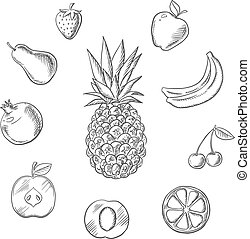 Fruits an berries sketches set