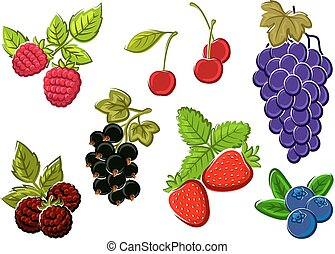 Isolated garden and wild berries fruits - Cherry,...