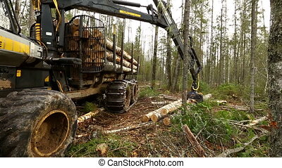 Modern robotic loader engaged in lifting logs - Woodworking....