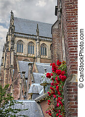 Twine red roses on the facade of the Grote Kerk...