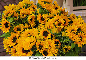 Street flower shop with beautiful sunflower bouquets