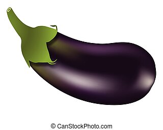 eggplant against white background, abstract vector art...