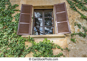 Old wooden window overgrown with ivy - Wide angle of old...