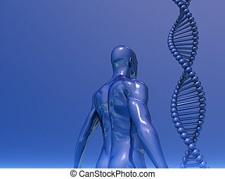 genetic - DNA strands and human body on blue background - 3d...