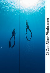 Freedivers - Two free divers training in the open sea