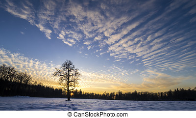 sundown on a clearing with snow - sundown on a clearing with...
