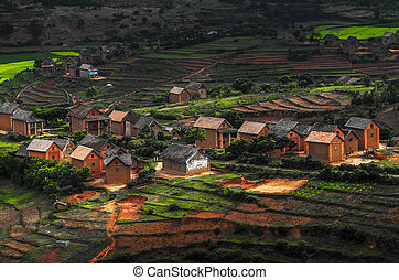 Madagascar - Small village on the hill with green gardens...