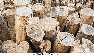 Background stack of wood - A stack of logs of various trees...