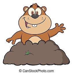 marmotta, cartone animato, Character, ,