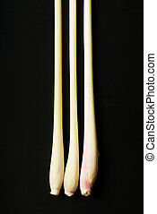 Lemongrass - Three pieces of lemongrass on a black...