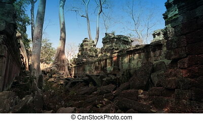 "Preah Khan(it is translated as ""A sacred sword""). Trees and ruins of the temple, Siem Reap, Cambodia"