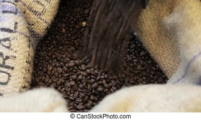 Process pour out of fried coffee grains into bag in factory...