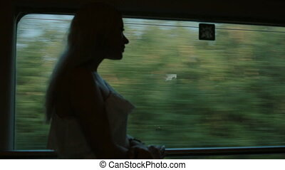 Beautiful girl standing by the window of the train -...