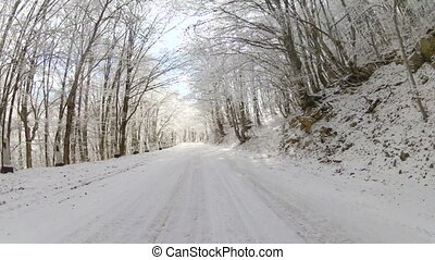 forest road strewn with snow, GoPro - old road through the...