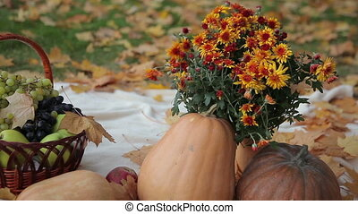 Fruit Basket and Pumpkins - motion picture of different...