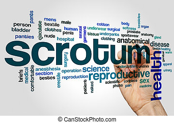 Scrotum word cloud concept - Scrotum word cloud