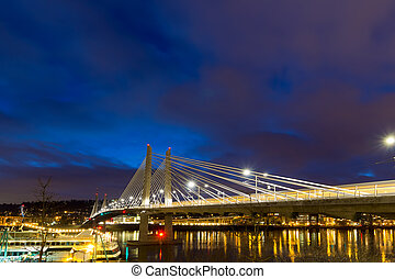 Light Trails on Tilikum Crossing at Blue Hour - Train Light...