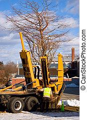 Tree Transplanter - A piece of heavy duty machinery that...