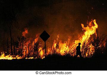 Fire fighting - Fire fighter walking near a bushfire