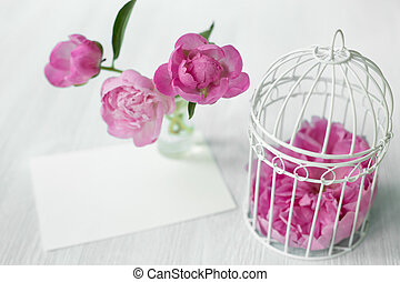 Pink peony flower. - Pink peony flower over white wooden...