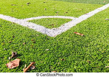White line on the green soccer field