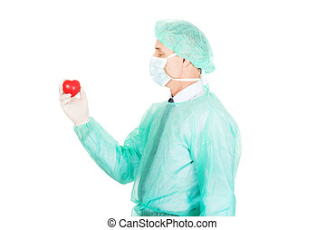 Male doctor holding heart model - Mature male doctor holding...